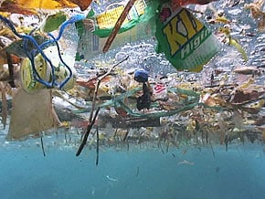 The Great Pacific Garbage Patch - possibly as large as the continental US