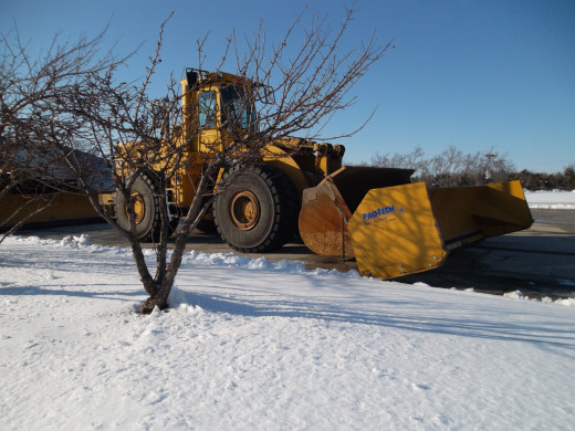 Don't drive until snow plows have cleared and treated the roads