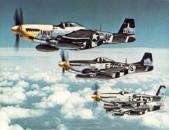 A squadron of P-51s