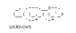 Year of the Rat: Happy New Year ASCII Text Art
