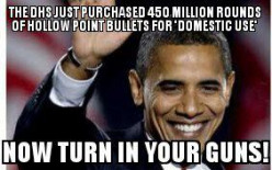 Why does the department of homeland security need 450 million rounds of hollow point bullets?