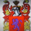 dsiant profile image