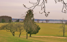 The Patuxent River is visible from the plantation house & gardens of Sotterley.