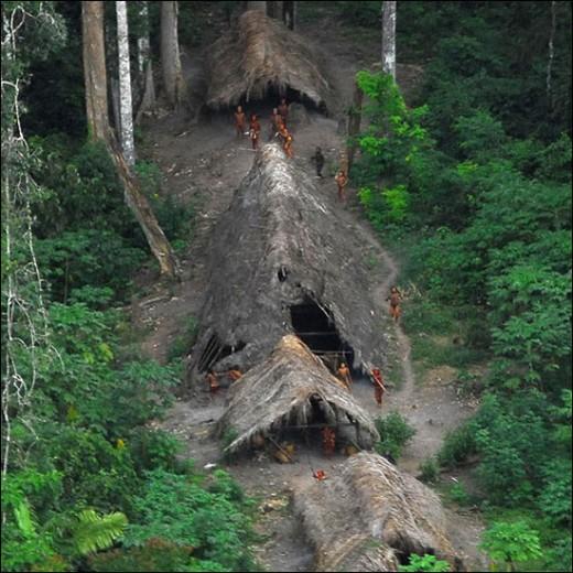 Tik Tribe