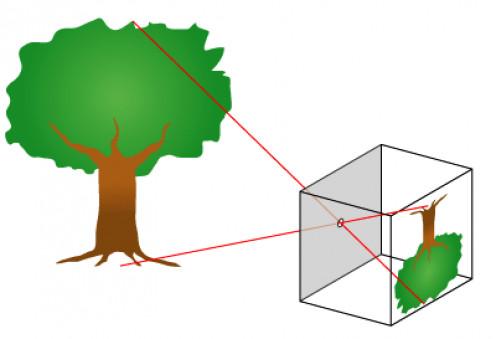 How a pinhole camera works.