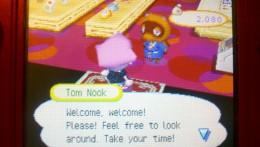 Tom Nook's store in Animal Crossing: Wild World