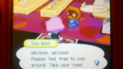 Tom Nook's store in Animal Crossing: Wild World
