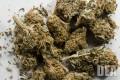 Are Marijuana and Schizophrenia Linked?