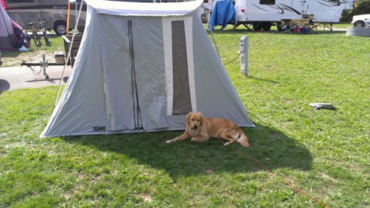 Camping is enjoyable for friends of all kinds! Consider a camping reunion...