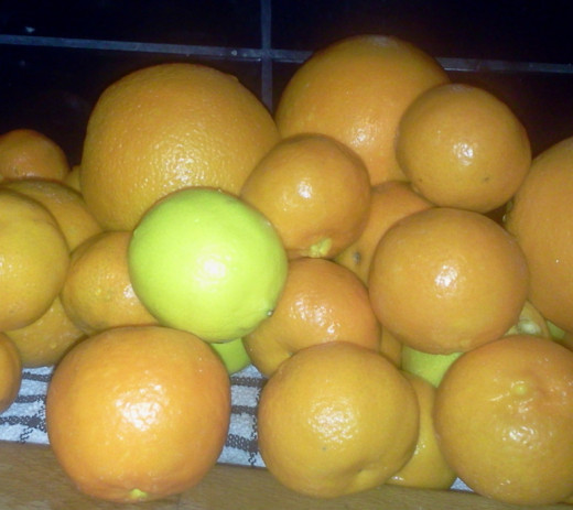 Leftover citrus fruit mountain.