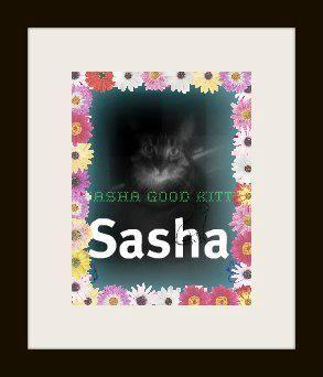 Sasha is 5 years old