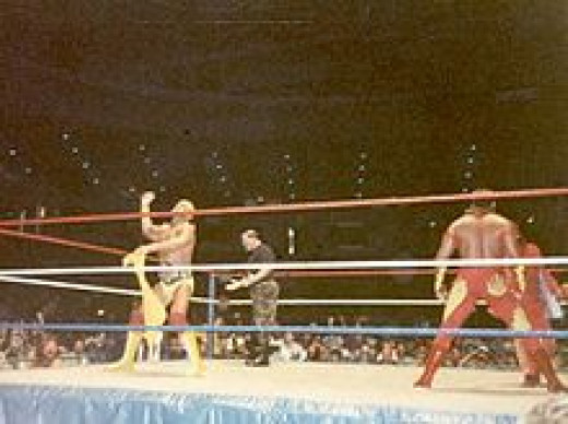 Hogan as WWF Champ Wrestling with Brutus Beefcake
