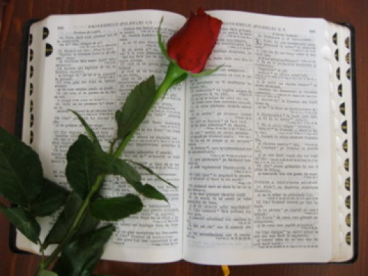 Bible with a rose
