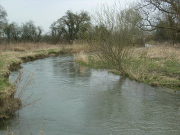 Undercuts in a riverbank can provide excellent feeding locations for hungry fish.