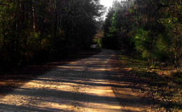 Bowden Road
