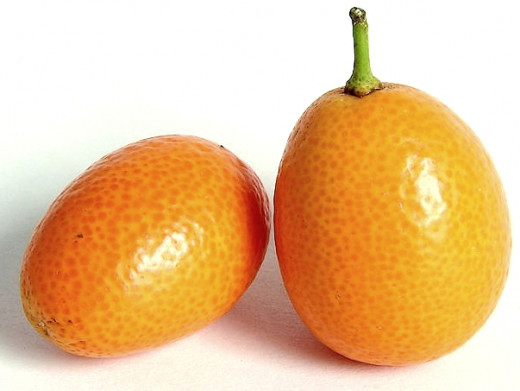 Kumquats are a great food for weight loss with only 71 Calories, 2g of protein and 6g of fiber per 100g.