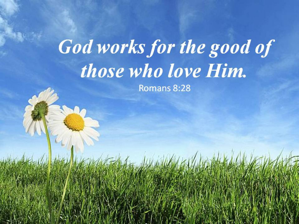 Words of Wisdom From the Bible | HubPages