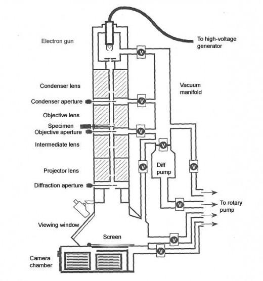Electron Microscope.