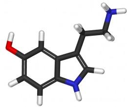 Meet serotonin.