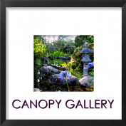 Canopygallery profile image