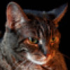 LogiCat profile image