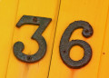 36 Fun Facts About the Number 36