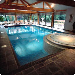 Modern indoor swimming pool with round hot tub with for Sport swimming pool design