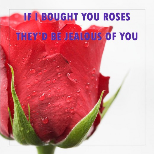 if i bought you roses theyd be jealous of you - Valentines Day Messages For Girlfriend