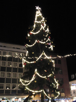 Christmas Tree in Bingen