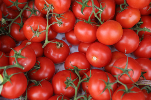 Tomatoes contain lycopene in abundance,