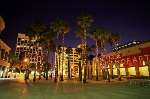 Circle Of Palms Plaza