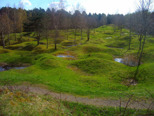This is a picture taken in 2005 of the battlefield site at Verdun.