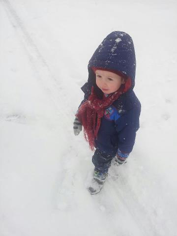 Ollie aged 2 just last week.