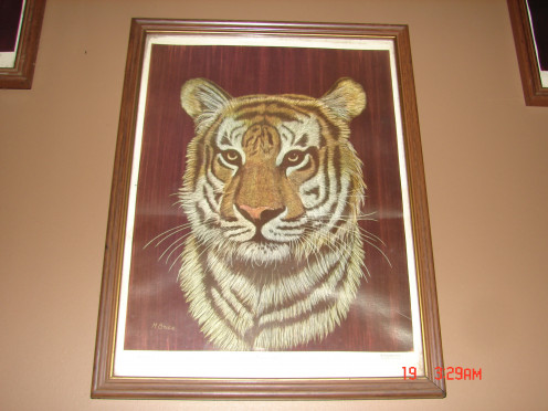 This is a picture of a tiger that my aunt had given to me.  It hangs in my living room.