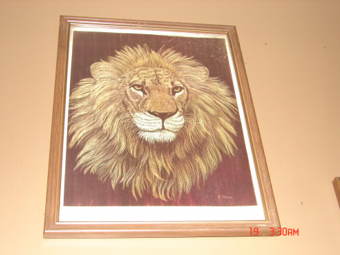 This is a picture of a lion that my aunt had given to me.  It hangs in my living room.