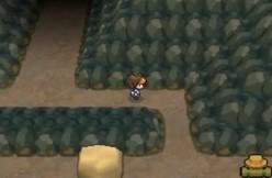 Pokémon Black 2 and White 2 walkthrough, Part Twenty-Three: Relic Passage