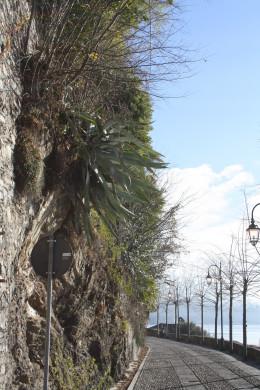 Lago d' Orta (Lake Orta), Walk Along Promenade, Italy