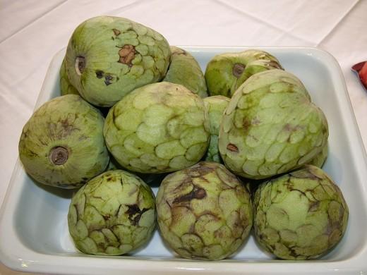 Cherimoya (Annona cherimola) Anona, Cherimoya, Chirimolla, Chirimoya, Sherbet-fruit