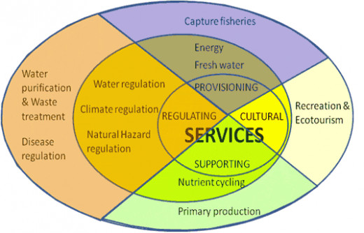 Schematic representation of the ecosystem services selected by UNEP, as categorized in the Millennium Ecosystem Assessment