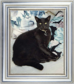 *Russian Blue Cat's Advice on Decorating with Cat Art*