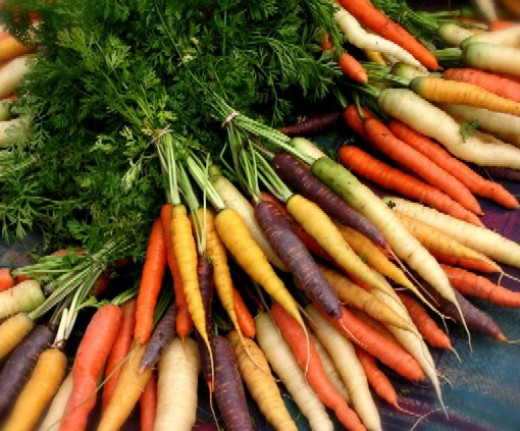 Heirloom carrots show the variety of colors besides orange but they all have beta-carotene which is great for your skin! and these would be fun to plant!