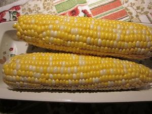 Fresh from the farm corn
