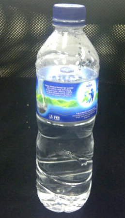 You need 2 bottles (of 600 ml volume) like this for the body, legs, head, and tail.