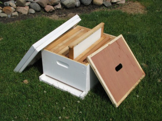 Frames will be transferred over to a new hive such as this one from Cottage Craft Works .com