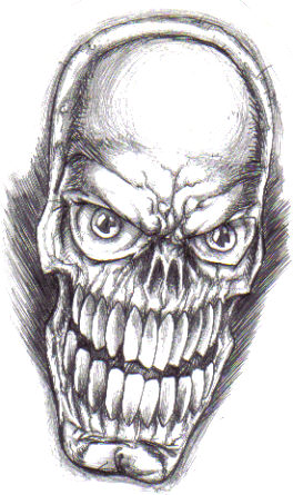 Skull head drawing sketched in black biro for an unexpected sketchy and great effect, sort of like when you photocopy pencil art.