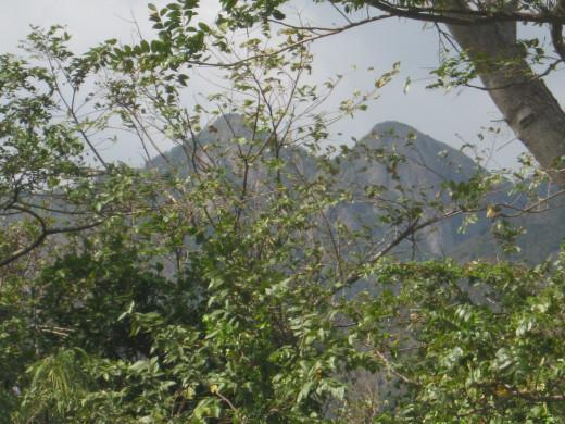 Cayey, Puerto Rico landscape