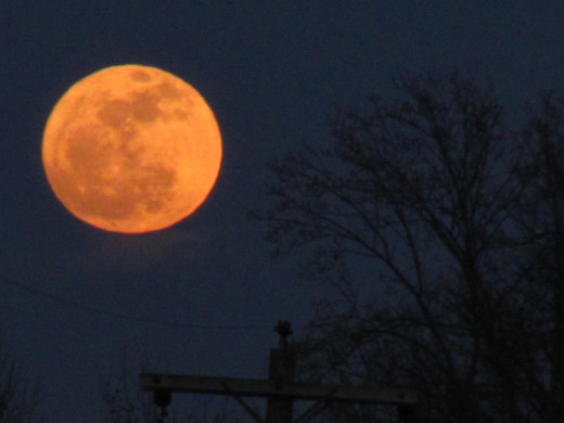 The Moon rise this evening was spectacular in the size and speed in which it appeared in the sky.