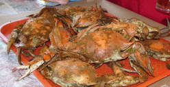 Maryland: MD is the Crab and Seafood State