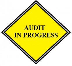 Company Auditors