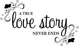 Story Never Ends